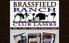 Brassfield Ranch Club Lambs