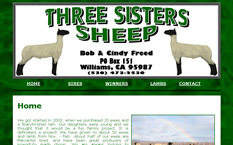 Three Sisters Sheep
